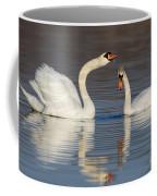 Mute Swans Drinking Coffee Mug