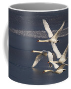 Mute Swans In Flight Coffee Mug