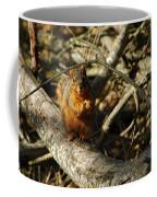 My Bushy Red Hairdo Coffee Mug