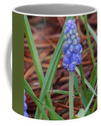 My First Bluebells Coffee Mug