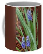 My First Grape Hyacinths Coffee Mug