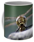 My Friend Vince The Dragonfly Coffee Mug