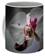 My Growling Dragon Orchid. Coffee Mug