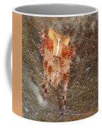 My Little Spider Coffee Mug