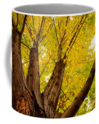 My Maple Tree Coffee Mug