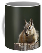 My Name Is Alvin Coffee Mug