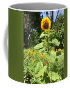 My Own Sun In My Backyard  Coffee Mug
