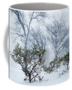 My Winter Love Coffee Mug