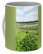 Myakka River And Marshes Coffee Mug