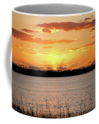Myakka Sunset Coffee Mug