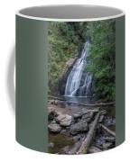 Mystery Falls  Coffee Mug