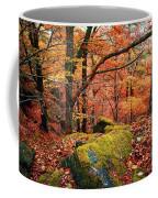 Mystery Of Autumn Coffee Mug