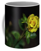 Mystic Yellow Rose Coffee Mug