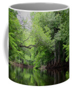 Mystical Withlacoochee River Coffee Mug