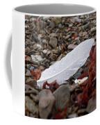 Nameless Feather 1 Coffee Mug