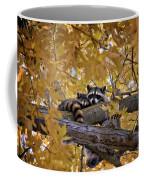 Napping Bandits Coffee Mug