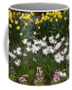 Narcissus And Daffodils In A Spring Flowerbed Coffee Mug