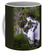 National Creek Falls 05 Coffee Mug