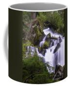 National Creek Falls 05 Coffee Mug