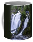 National Creek Falls 09 Coffee Mug