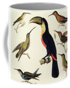 Native Birds, Including The Toucan From The Amazon, Brazil Coffee Mug