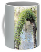 Natural Archway Over Hillsborough River Coffee Mug