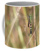 Natural Canvas With Dragonfly Coffee Mug