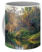 Natural Florida Landscape Coffee Mug