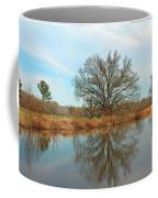 Natural Light Coffee Mug