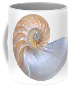 Natural Nautilus Seashell On White Coffee Mug
