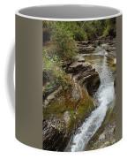 Natural Waterslide Coffee Mug