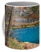 Naturally Blue Coffee Mug