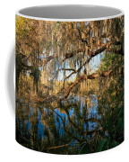 Naturally Florida Coffee Mug
