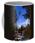Naturally Framed Coffee Mug by Chris Brannen
