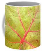 Nature Abstract Sea Grape Leaf Coffee Mug