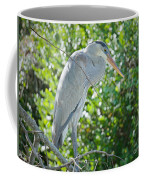 Nature At Its Best Coffee Mug