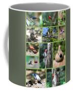 Nature Collage Coffee Mug