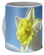 Nature Daffodil Flowers Art Prints Spring Nature Art Coffee Mug