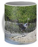Nature In Florida Coffee Mug