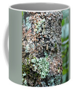 Nature Painted Tree Bark Coffee Mug