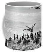 Nature Pelicans Rock  Coffee Mug