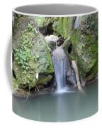 Nature Spring Scene Creek Coffee Mug