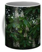 nature Ukraine blooming chestnuts Coffee Mug