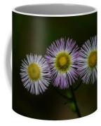 Nature's Asterisks Coffee Mug
