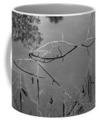 Natures Bridge Coffee Mug