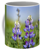 Natures Candy Coffee Mug