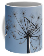 Natures Carnival Coffee Mug