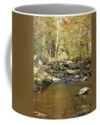Nature's Finest 5 - Ricketts Glen Coffee Mug