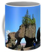 Natures Flower Pots Coffee Mug
