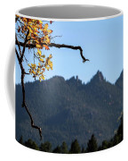 Nature's Frame Coffee Mug
